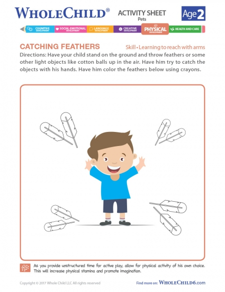 Catching Feathers
