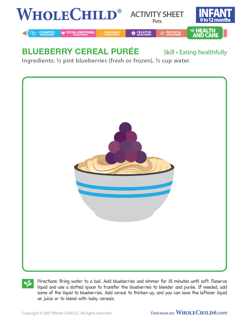 Blueberry Cereal Purée