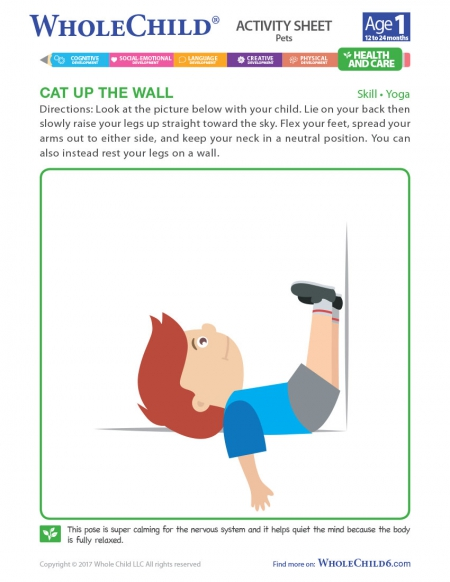 Cat Up The Wall